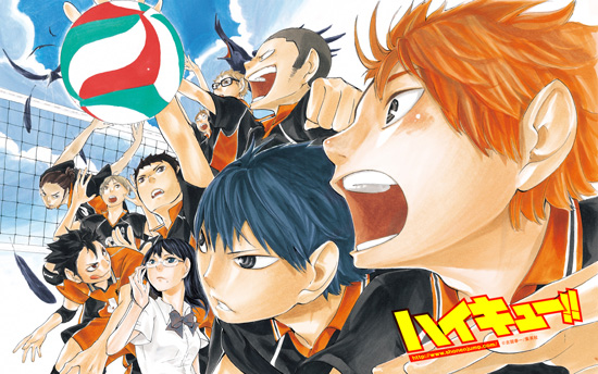 1331838207_haikyuu-poster-2