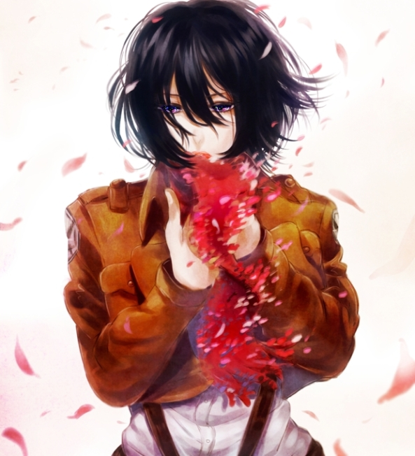 Mikasa.Ackerman.full.1493080